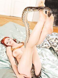 Рыжая шалунья с заросшей вагиной фоткалась со змеей