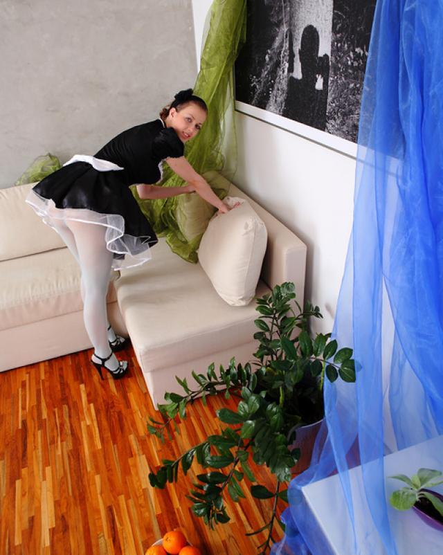 Французская горничная работает по дому клиента без трусиков