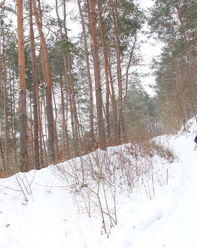 Парень обогревает трахом брюнеточку после лыжной прогулки